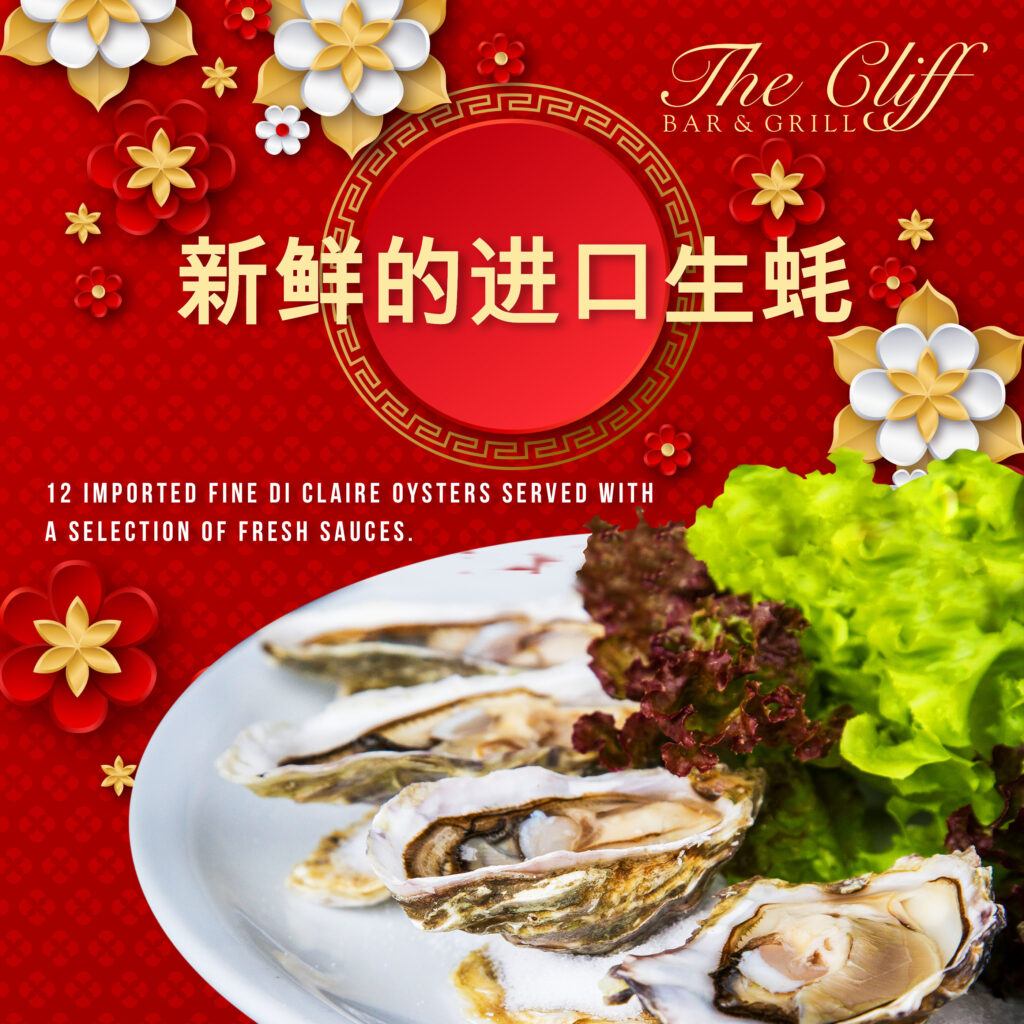 Chinese New Year Food Promotion
